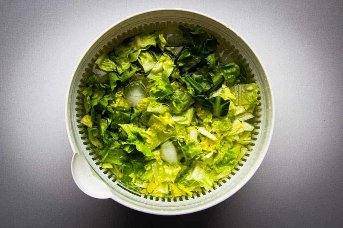 Soaking the lettuce in ice water.