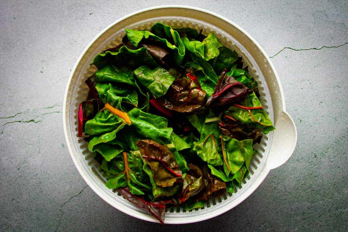 The washed swiss chard in a salad spinner.