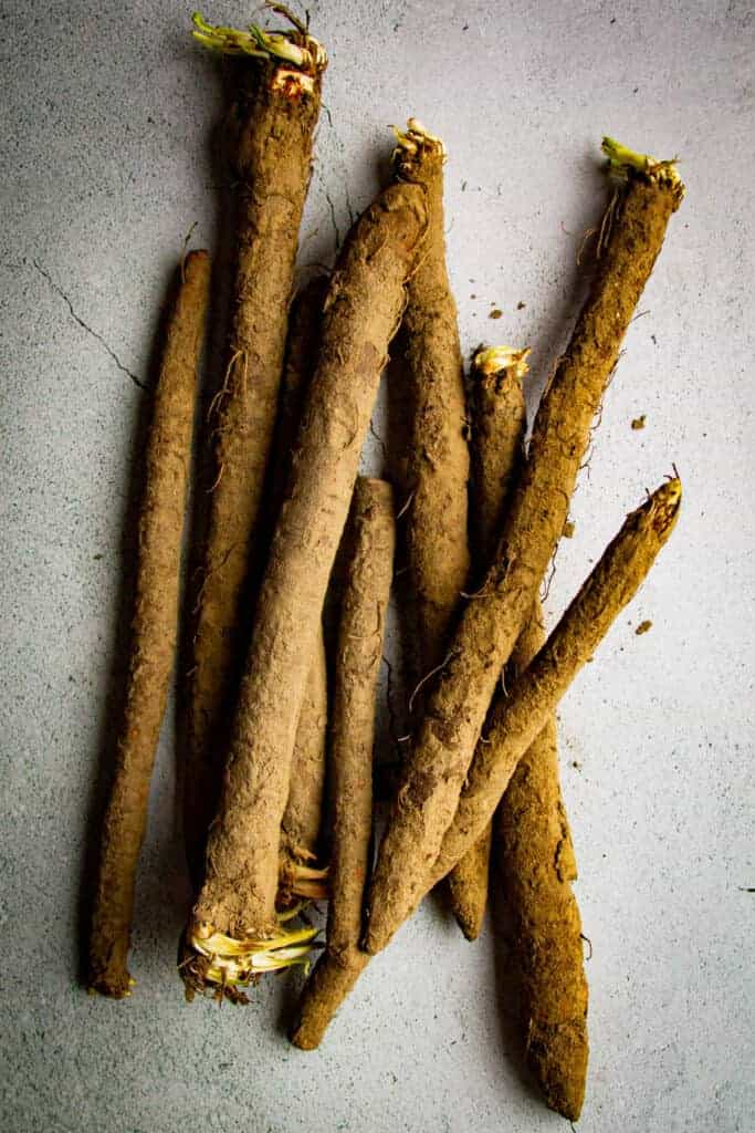 Black salsify raw on the table.