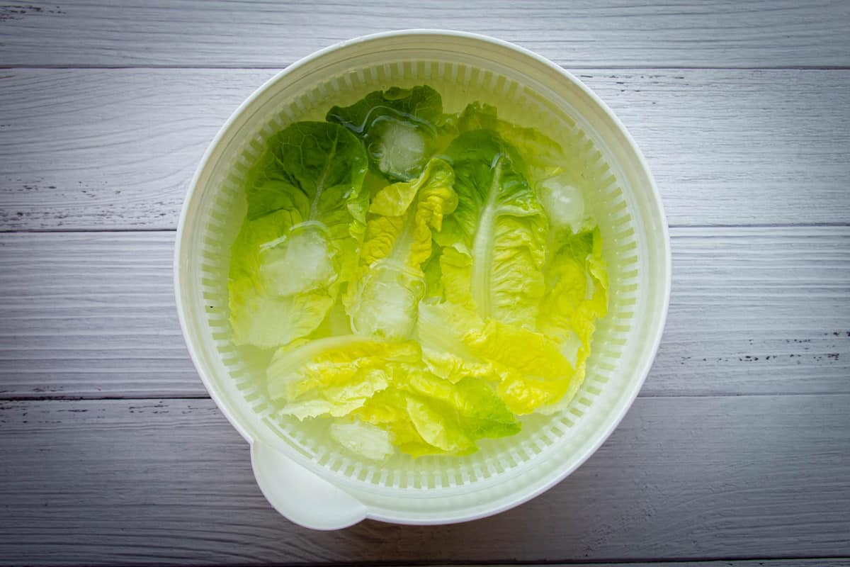 Soaking the romaine in ice water.