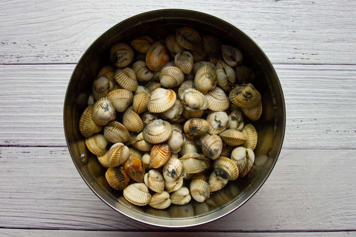 Soaking the cockles in cold salted water.